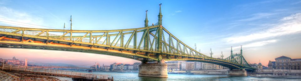 Budapest Semesters in Mathematics Education